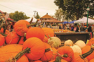 Orange County Pumpkin Festival - Southern Indiana Fall Festivals
