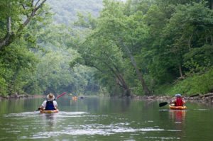 Surround yourself in natural beauty with an afternoon on the Blue River. Cave Country Canoes rents canoes and kayaks.