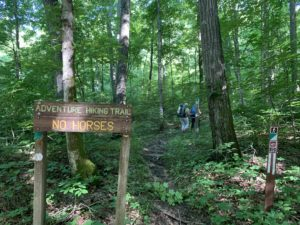 O'Bannon Woods State Park Adventure Trail (2)
