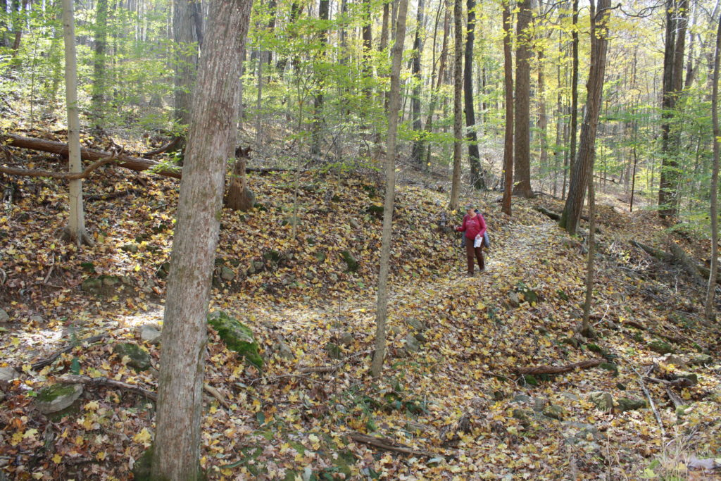 O'Bannon Woods State Park hiking